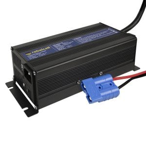 12.6V20A charger